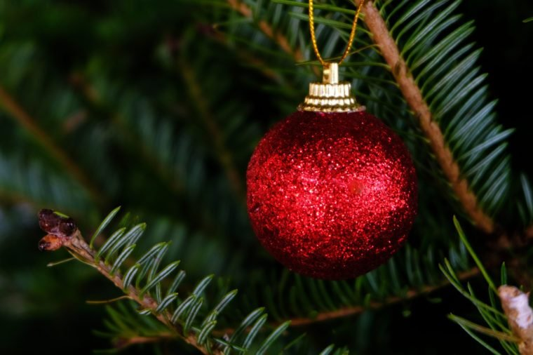 Abstract blurred of Christmas Tree bokeh background. New Year Celebration. for banner  montage product display selective focus