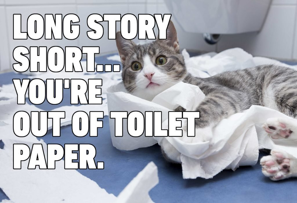 Cat Memes You'll Laugh at Every Time | Reader's Digest