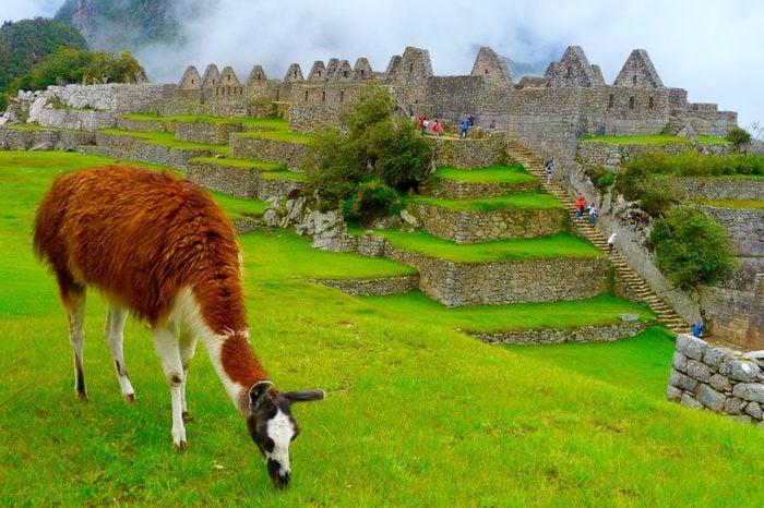 Johanna Read travel 60 countries peru