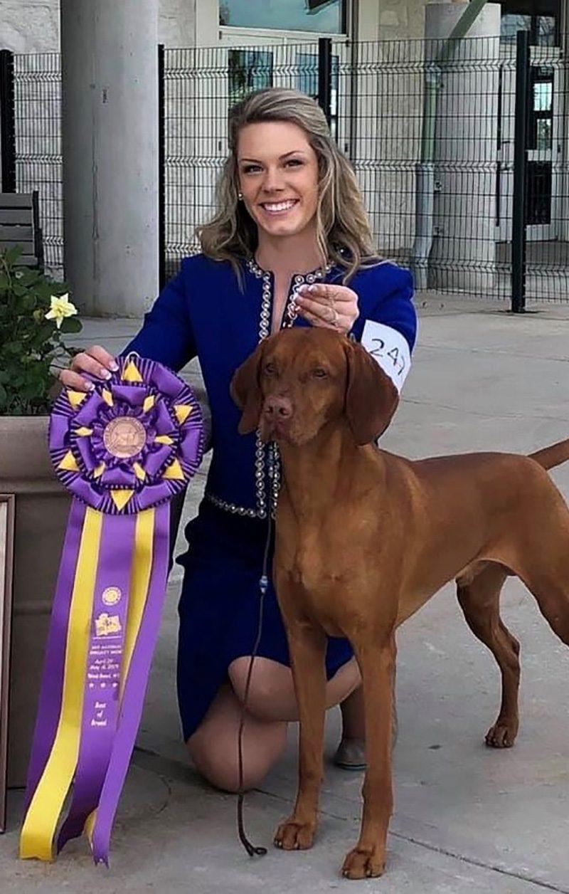 boomer dog winner westminster dog show