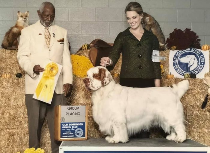 howie dog winner