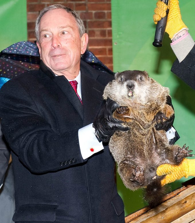 michael bloomberg groundhogs day