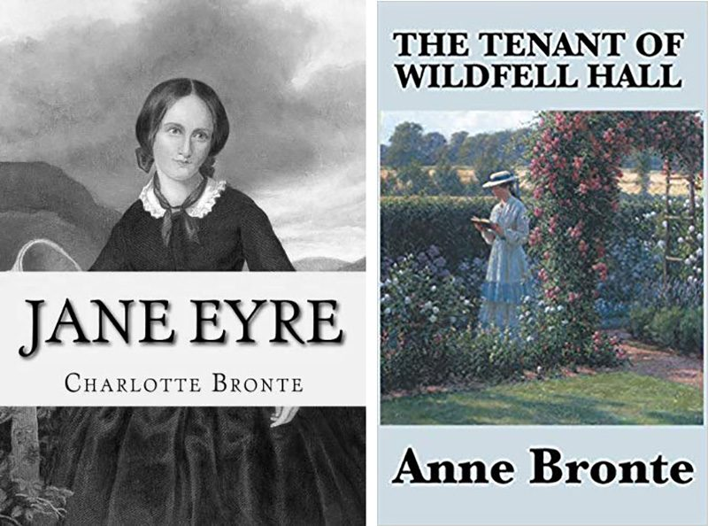 jane eyre book and the tenant of wildfeld hall