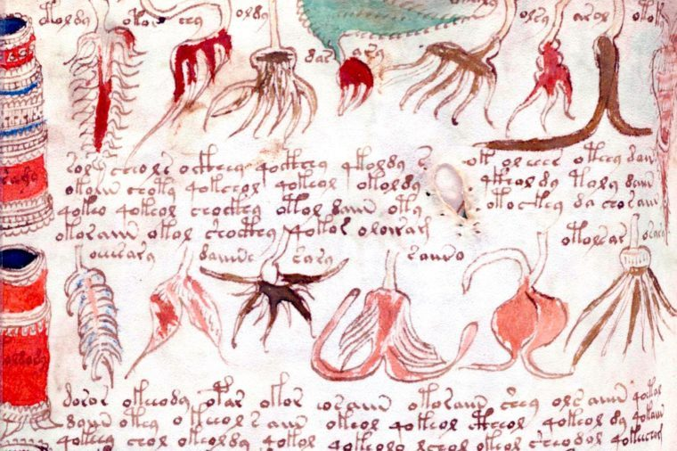 The Voynich Manuscript is considered by scholars to be most interesting and mysterious document ever found. Dated 16th century