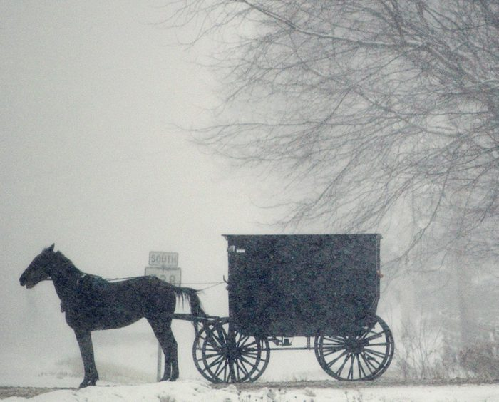 An Amish buggy waits in the falling snow to cross a roadway in Middlefield, Ohio.