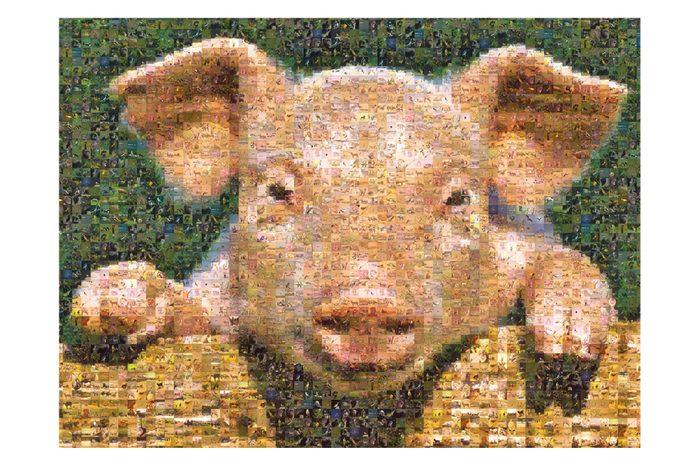 photo mosaic puzzle
