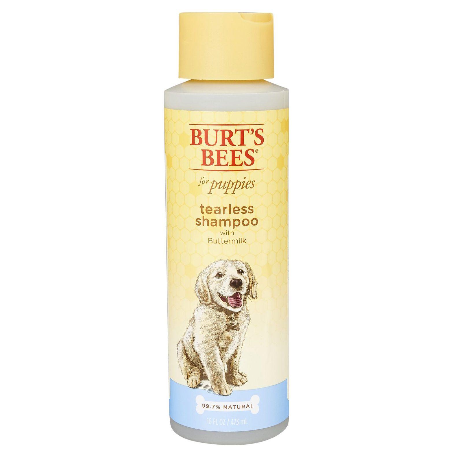 burts bees dog shampoo