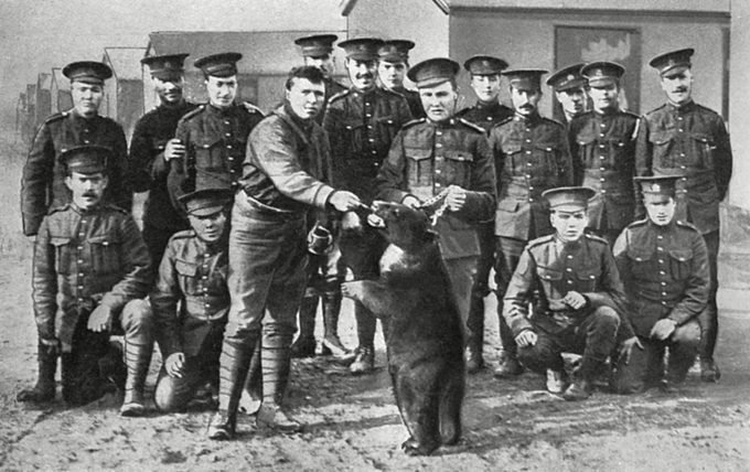 Mandatory Credit: Photo by Historia/Shutterstock (9814478a) Canadian Troops in Camp at Salisbury Plain Posing with Their Regimental Pet A Black Bear. There is No Hard Fast Evidence to Suggest So in the Caption But It is Possible That This is Winnie the Bear Smuggled to Britain by Lt. Harry Colebourn of the Fort Garry Horse A Canadian Cavalry Regiment En Route to the Western Front. the Bear Was Left at London Zoo where She Became Very Popular with Visitors Including Christopher Robin Milne Son of A. A. Milne Who Would Go On to Write His Winnie-the-pooh Stories Based On the Animal. . Unattributed Photograph in the Illustrated Sporting and Dramatic News, 28 November 1914 Canadians in Camp at Salisbury Plain with Bear Mascot, 1914