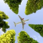 This Airline Aims to Become the Most-Eco Friendly in the Country
