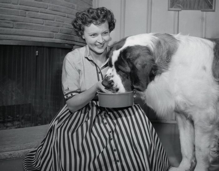 Betty White feeding her huge St. Bernard, Stormy