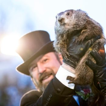 10 Famous Groundhogs Besides Punxsutawney Phil