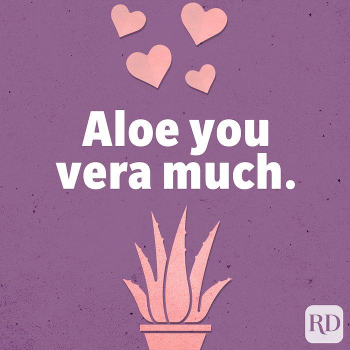 Aloe you vera much.