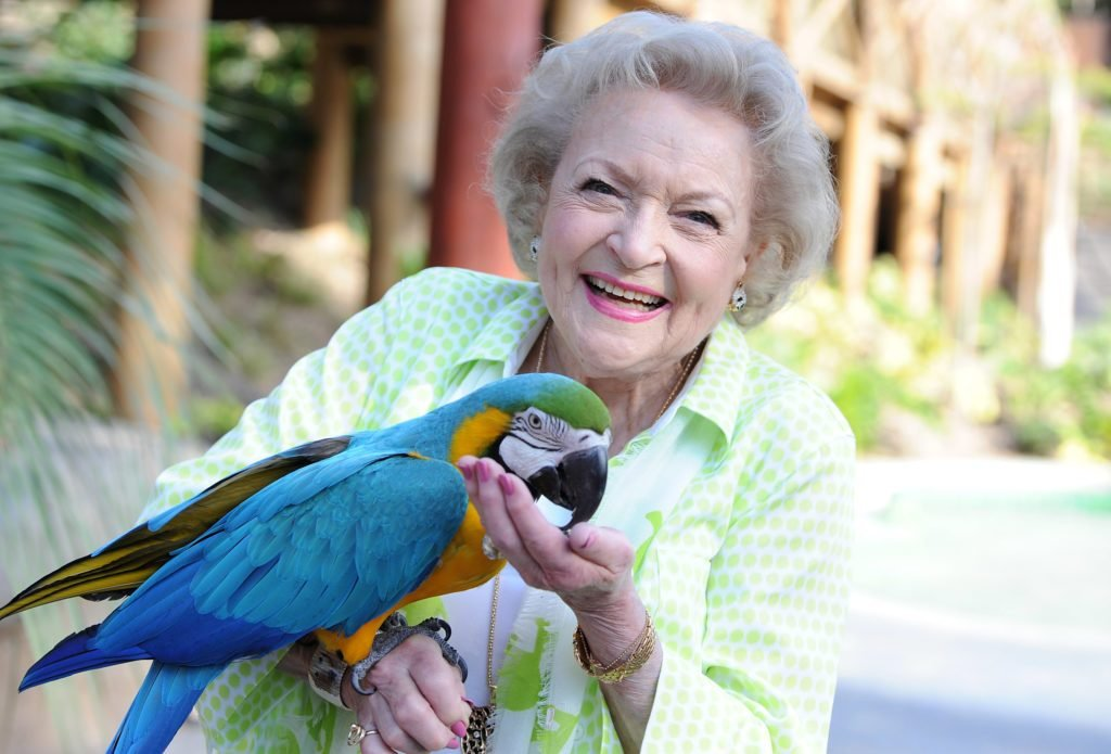 ctress Betty White holding a parrot at the Greater Los Angeles Zoo Association's (GLAZA) 44th Annual Beastly Ball at Los Angeles Zoo on June 14, 2014 in Los Angeles, California.