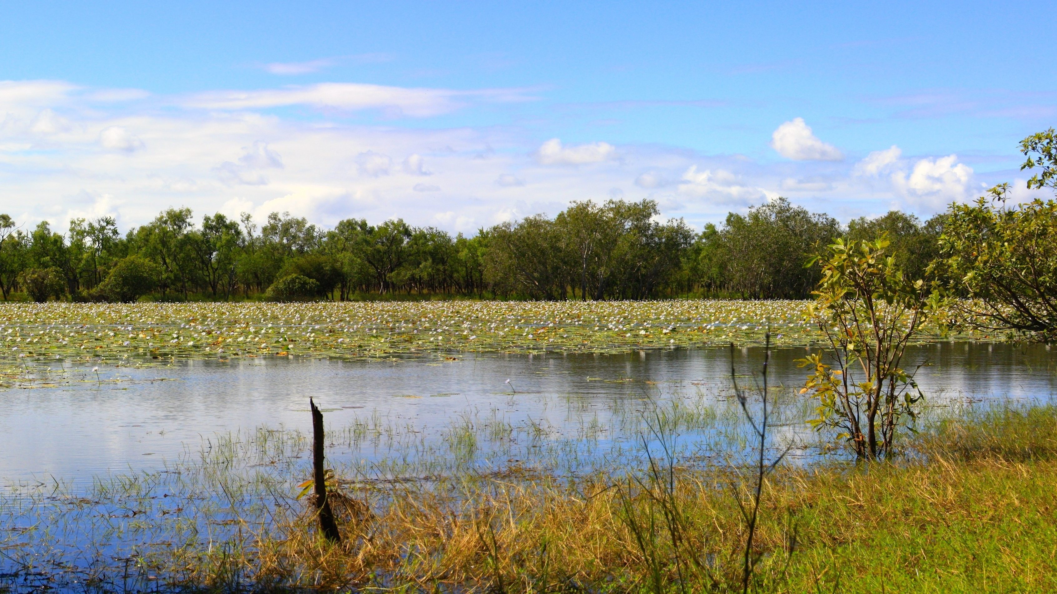 limmen national park, northern territory, australia