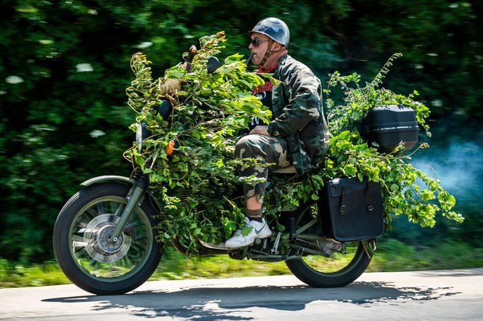 a man rides a motorcylce covered in leaves and branches