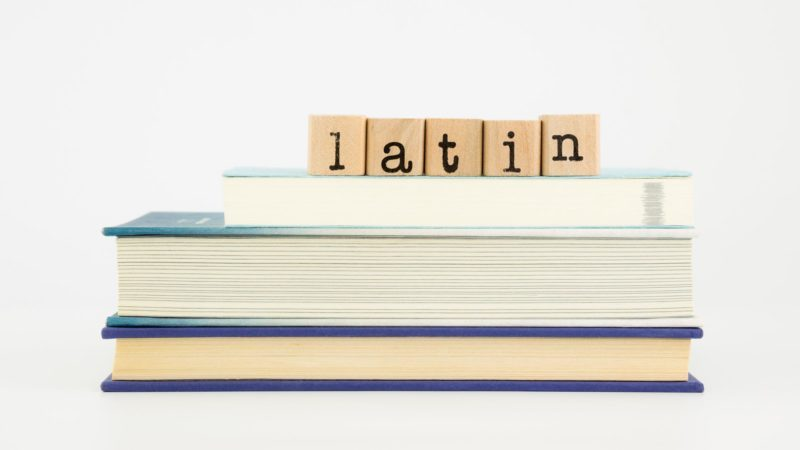 latin word spelt out on wooden tiles on books, language and study concept.