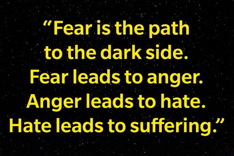 """""""Fear is the path to the dark side. Fear leads to anger. Anger leads to hate. Hate leads to suffering."""""""