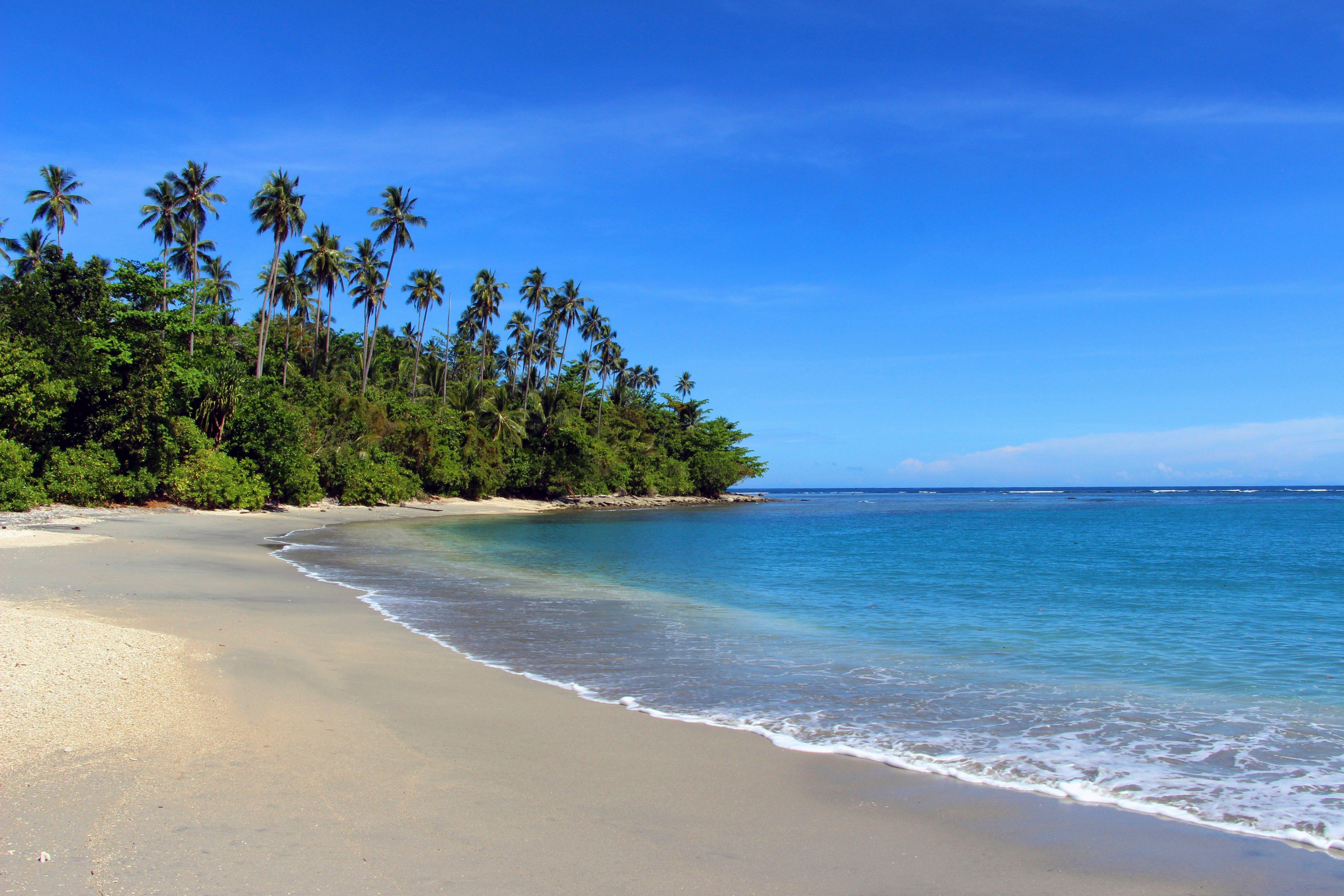 Tropical Beach, Solomon Islands, Honiara