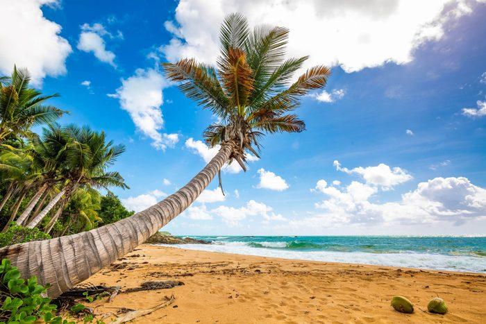 Exotic carribean shore of Puerto Rico Flamenco beach shore