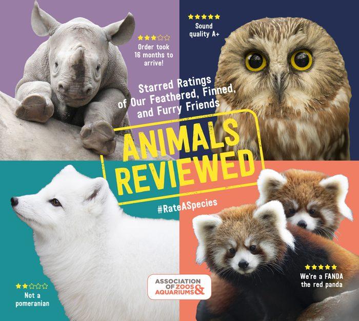 animals reviewed book #rateaspecies