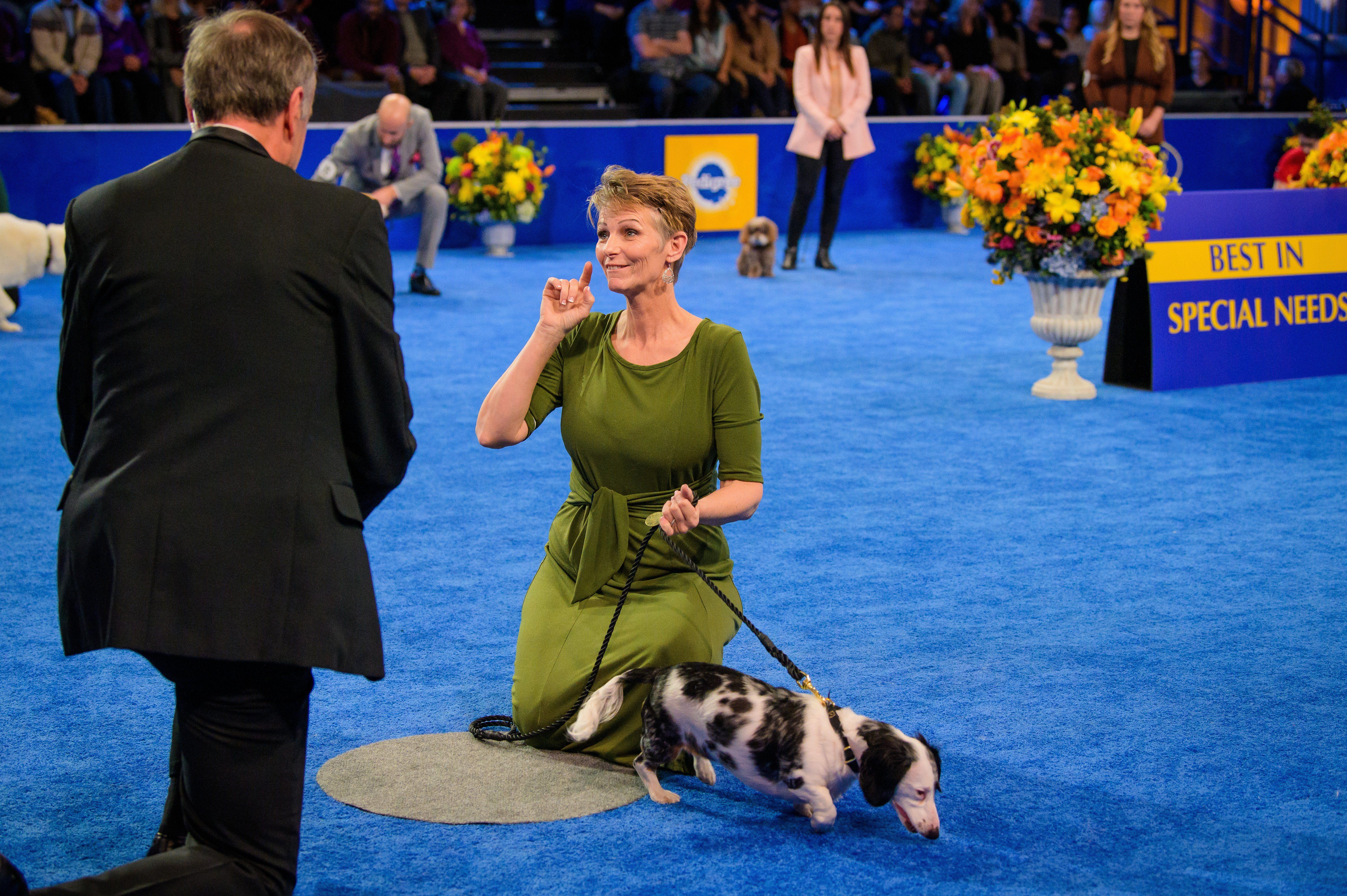 helen keller dog american rescue dog show