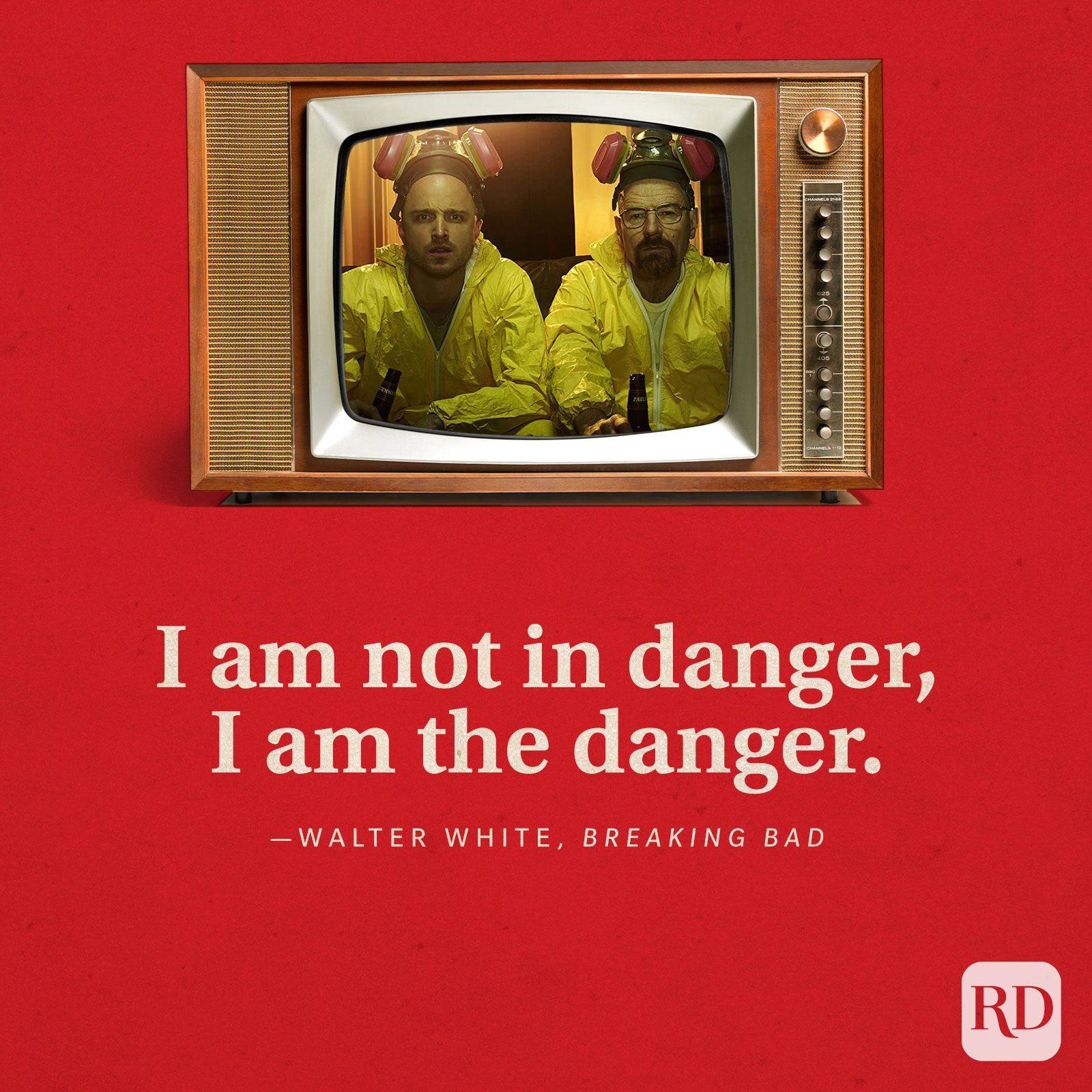 """""""I am not in danger, I am the danger."""" -Walter White in Breaking Bad."""