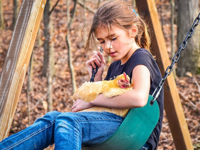 spring chicken little girl