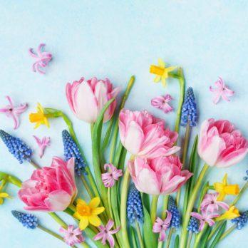 12 Spring Celebrations Around the World