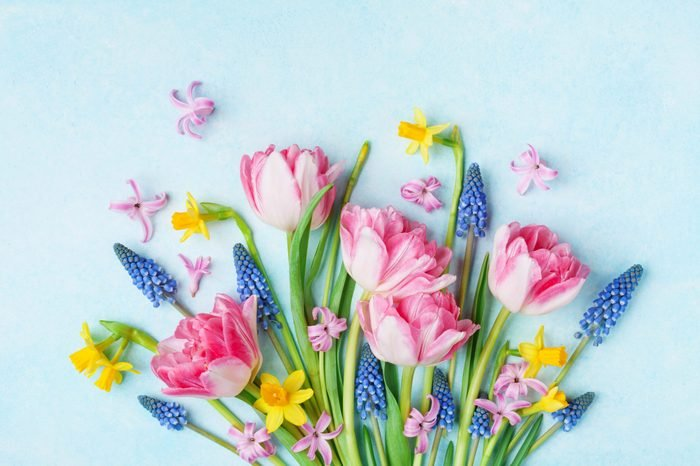 spring flowers spring celebrations spring equinox