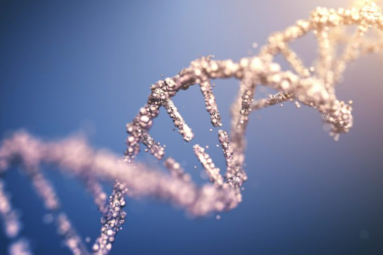 genetics counselling dna