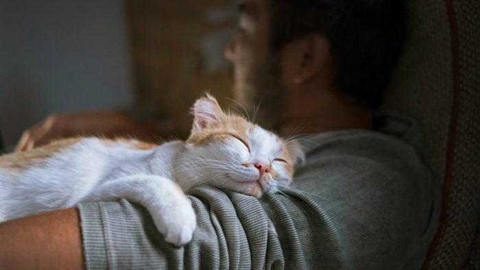 cat sleeping on man's arm