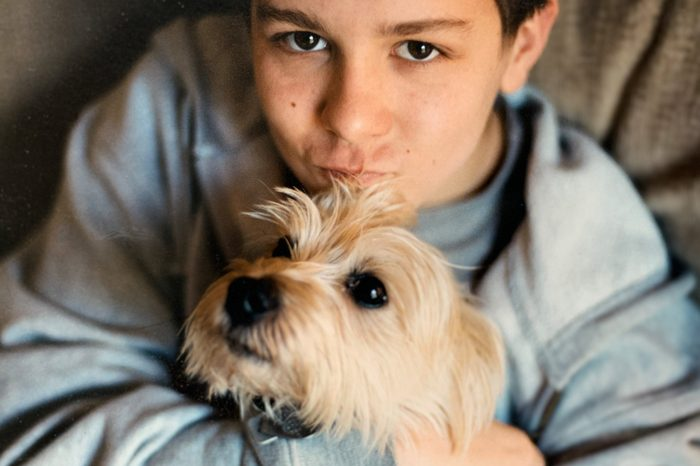 Young Boy and His Dog Cairn Terrier lap dog