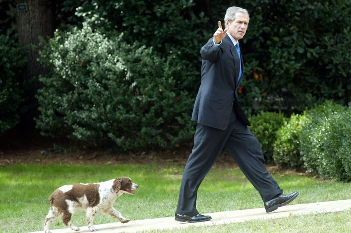 president bush and spot the dog