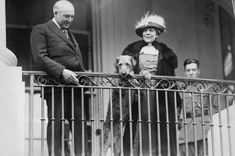 president harding and florence harding and laddie boy dog