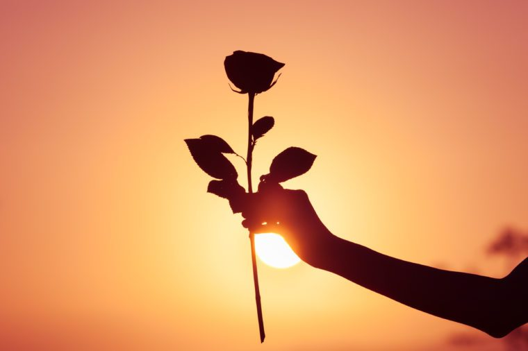 Silhouette woman holding rose against sunset.