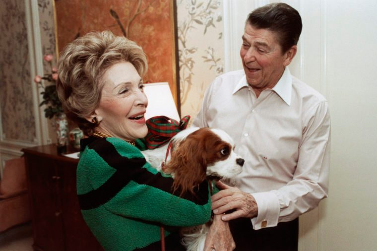 reagan dog