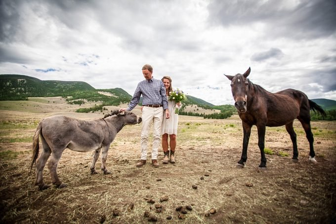 tha author and mike on their wedding day with two donkeys