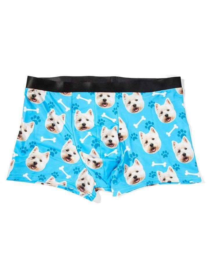 dog boxers