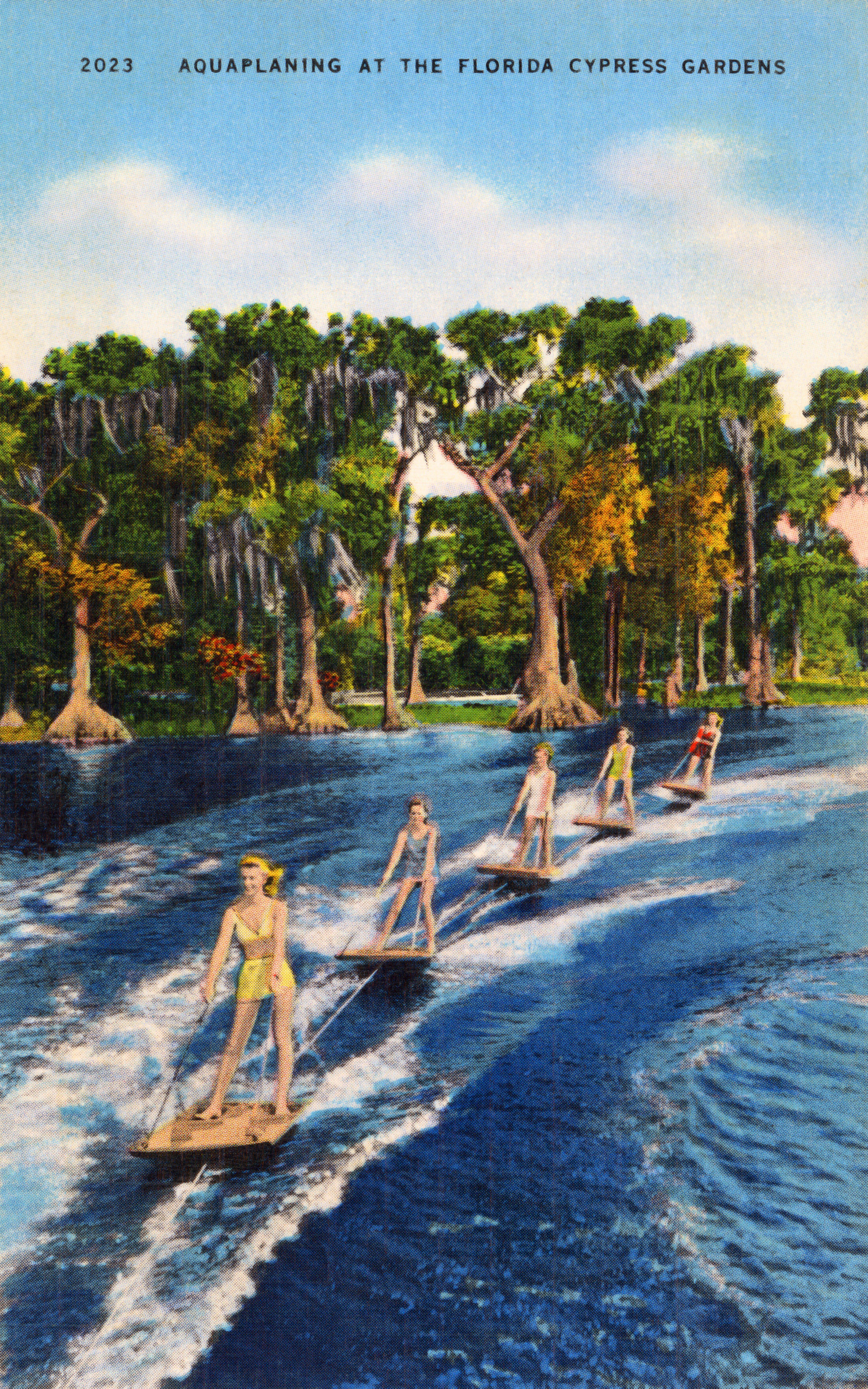 florida cypress gardens vintge postcard