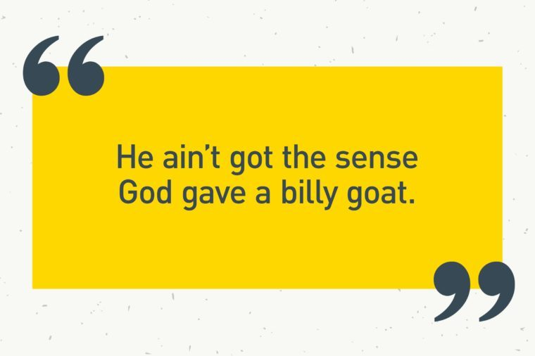 "yellow text box. ""he ain't got the sense god gave a billy goat."""