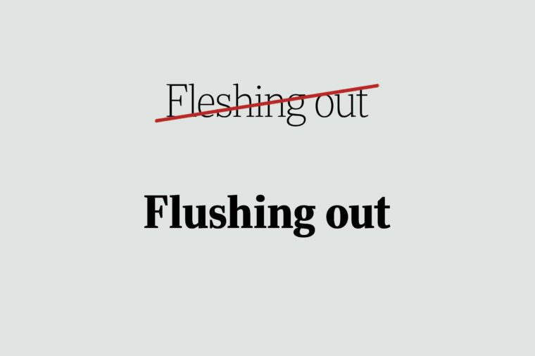 phrases you're using wrong flushing out
