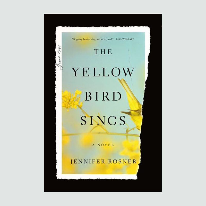 the yellow bird sings book