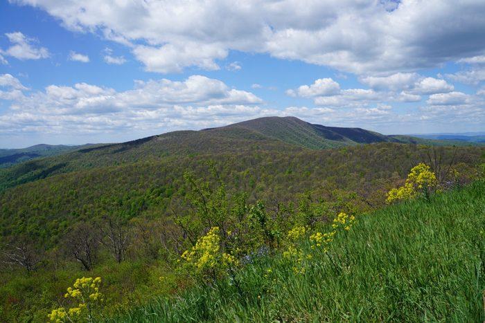Driving Skyline Drive in Shenandoah National Park in Virginia