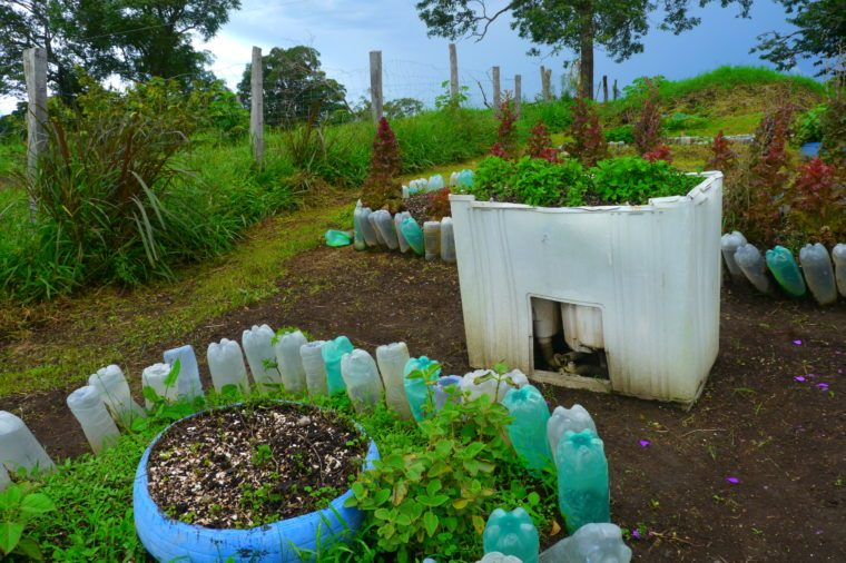 garden recycling Centenarians 100 years old costa rica blue zone
