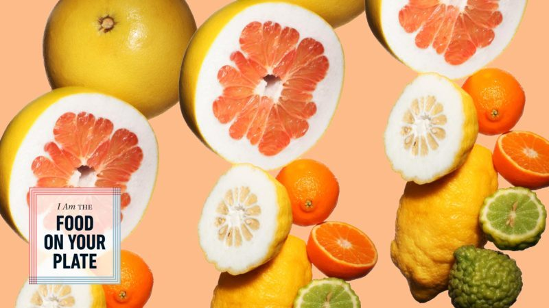 various citrus fruits on orange background