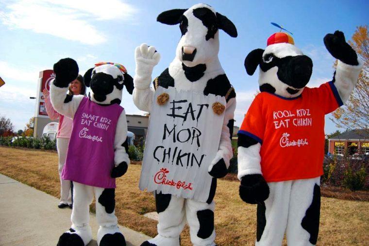 chick fil a cows mascot