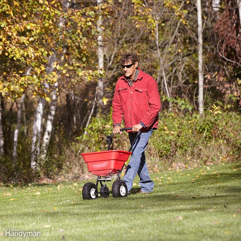 Fertilizing at the Wrong Time of Year