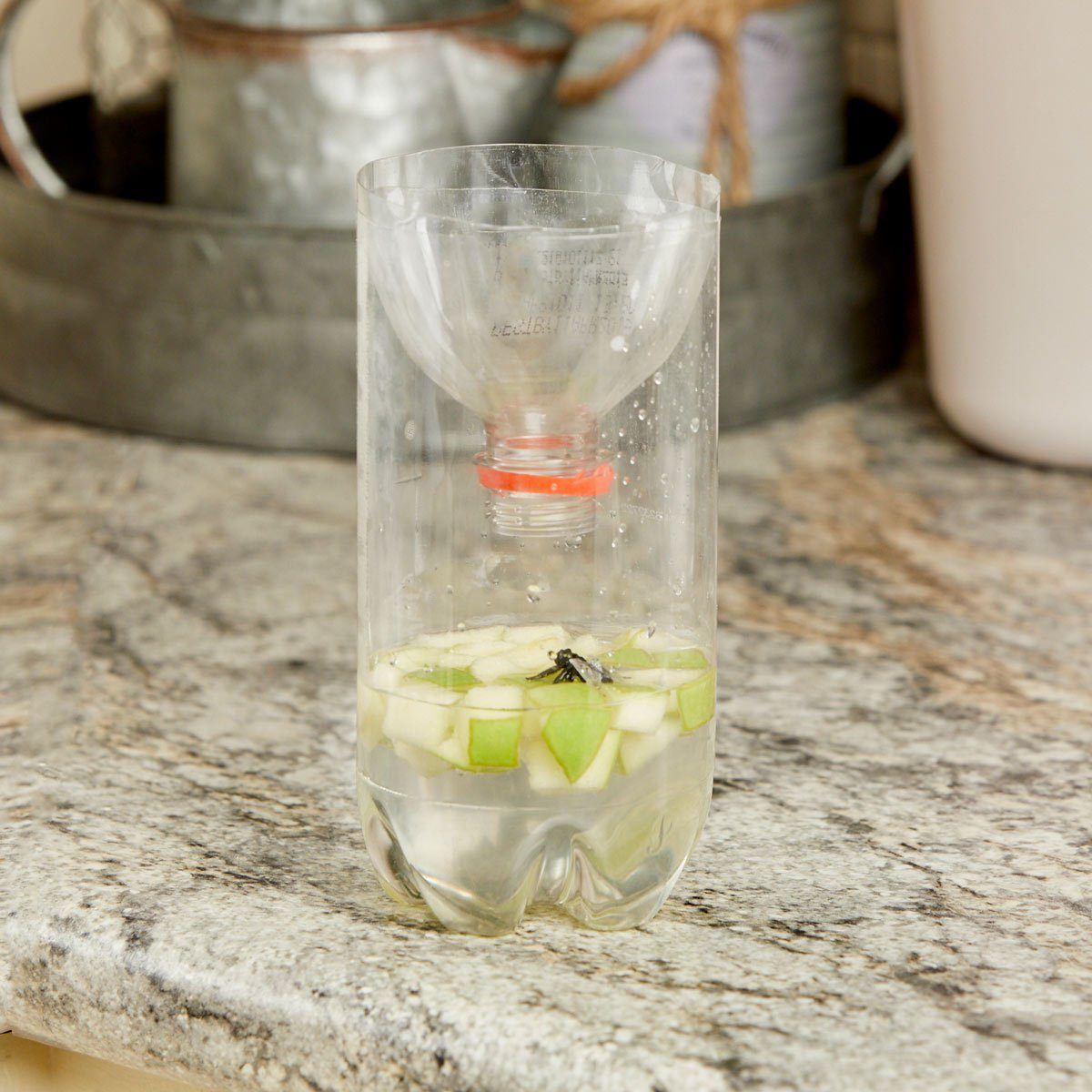 HH handy hint soda bottle fly trap apple chunks