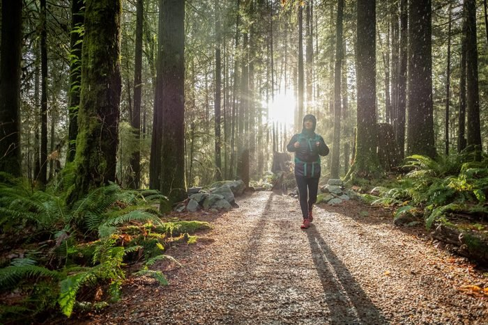 Solo, Mixed-Ethnic Woman Hiking in Rainy Forest, Sunbeams in Background