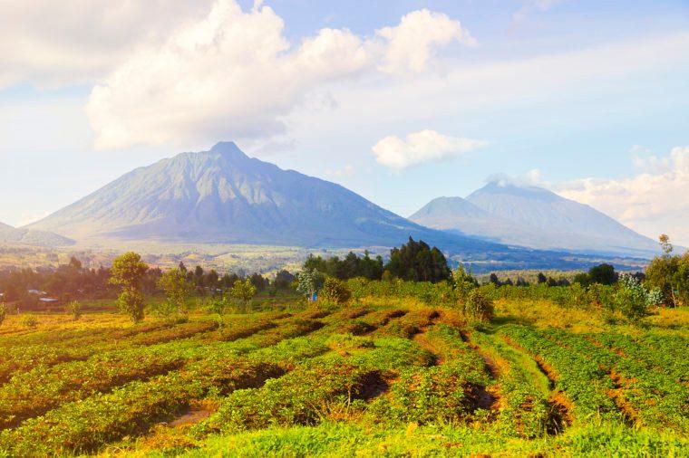 Virunga Mountains and Volcanoes in Rwanda